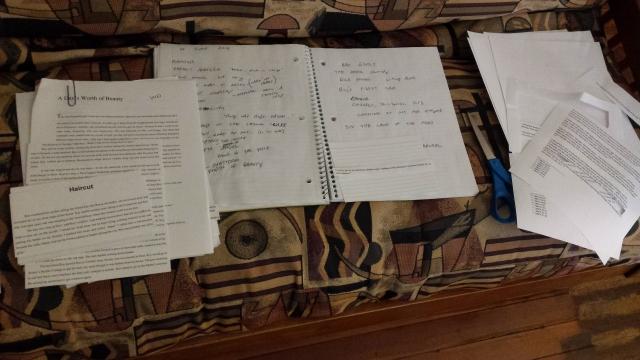 assembling a script for ROY'S WORLD